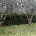 Artisan utomhuslampa i järn och dekorativt glas tillverkad i Italien - Beba